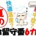 猫が快適な冷房クーラーの温度は?真夏のお留守番注意点6つ